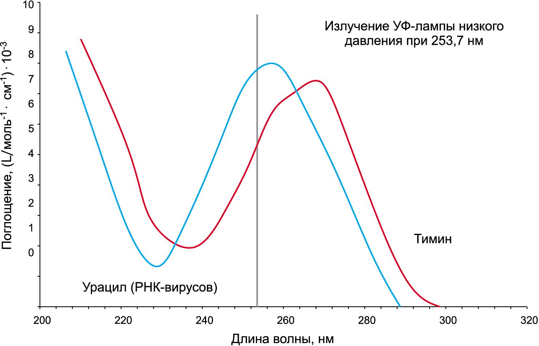 Сравнение спектра поглощения урацила со спектром поглощения тимина и пиковая длина волны ртутной лампы низкого давления
