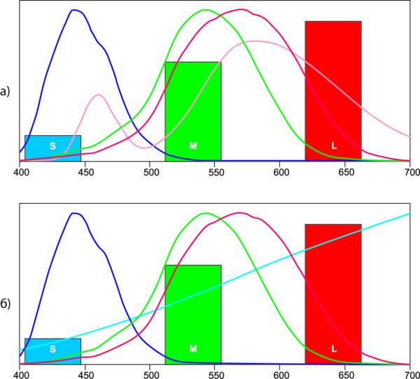 Спектры, наложенные на кривые чувствительности колбочек